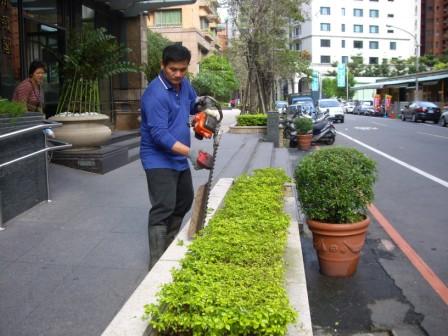 園藝修剪花草