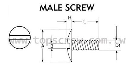 Binding Screws & Chicago Screw
