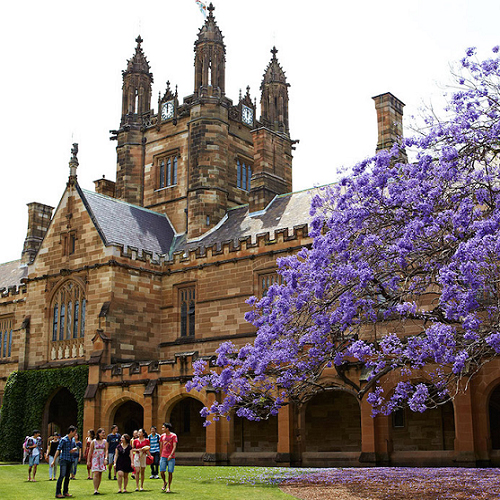 澳洲雪梨大學