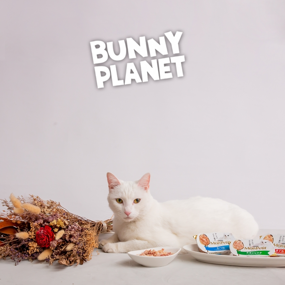 貓倍麗 MonPetit