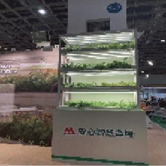 小型植栽展示架