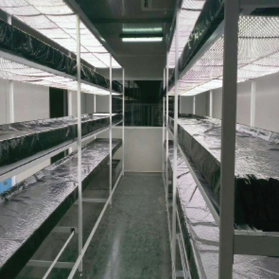 傳統保麗龍水槽植栽架