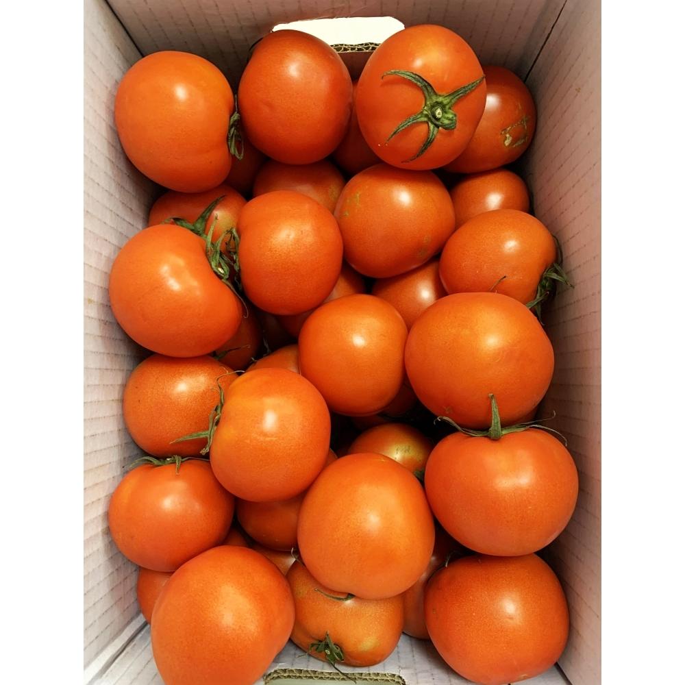 牛番茄 300g/包