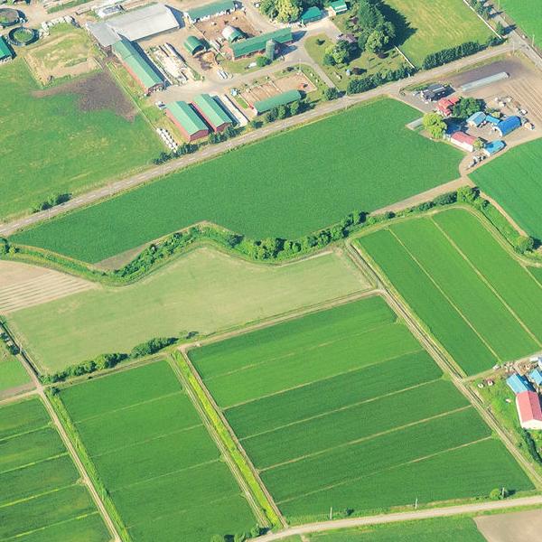 農地分割有何限制?