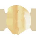 諾雅車體包膜-車體包膜,台中車體包膜