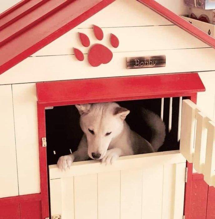 可愛大型狗屋