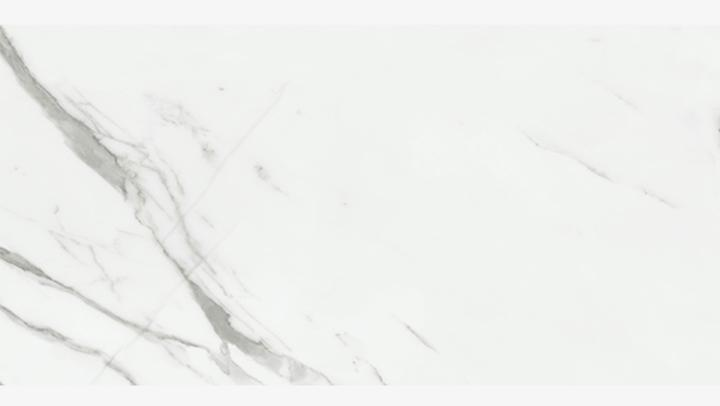 GU3101 雪白銀