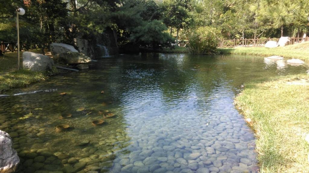景觀魚池濾水器