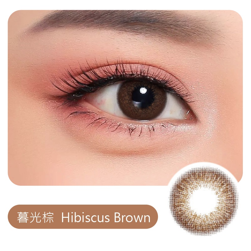 暮光棕 Hibisc