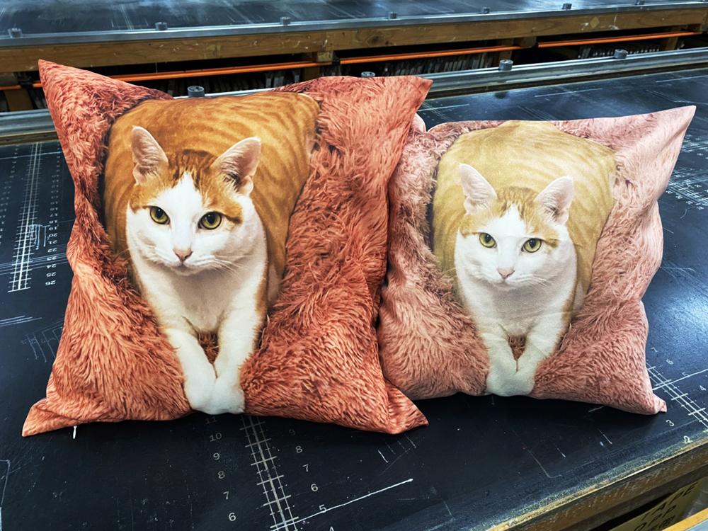 寵物抱枕訂做