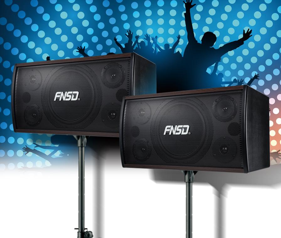 FNSD SD-305 10吋 專業級懸吊式/電視櫃 卡拉OK喇叭